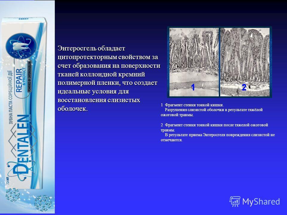 Энтеросгель обладает цитопротекторным свойством за счет образования на поверхности тканей коллоидной кремний полимерной пленки, что создает идеальные условия для восстановления слизистых оболочек. Энтеросгель обладает цитопротекторным свойством за сч
