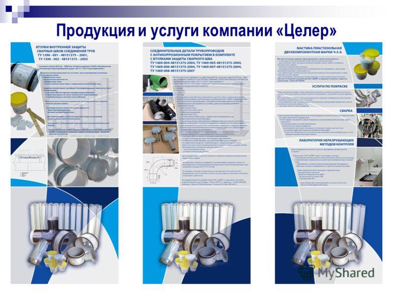 Продукция и услуги компании «Целер»