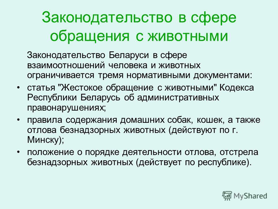 Законодательство в сфере обращения с животными Законодательство Беларуси в сфере взаимоотношений человека и животных ограничивается тремя нормативными документами: статья