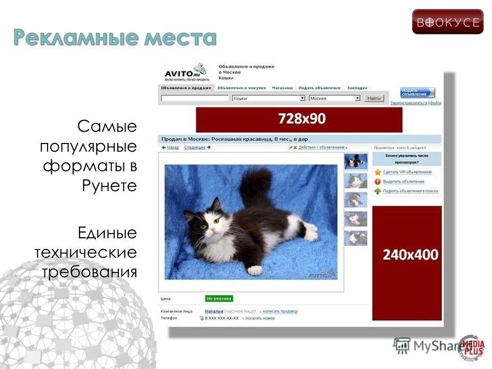 Самые популярные форматы в Рунете Единые технические требования