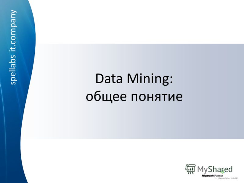 spellabs it.company Data Mining: общее понятие