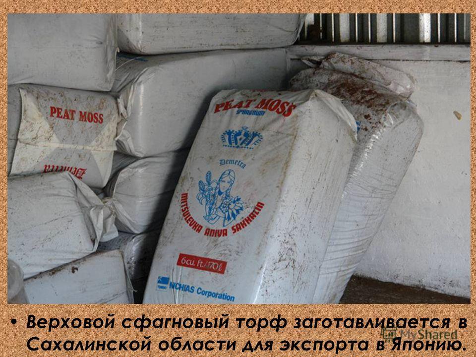 Верховой сфагновый торф заготавливается в Сахалинской области для экспорта в Японию.
