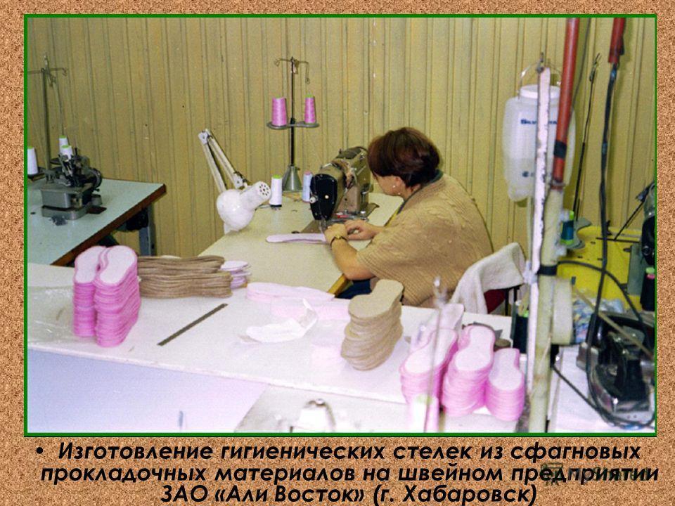 Изготовление гигиенических стелек из сфагновых прокладочных материалов на швейном предприятии ЗАО «Али Восток» (г. Хабаровск)