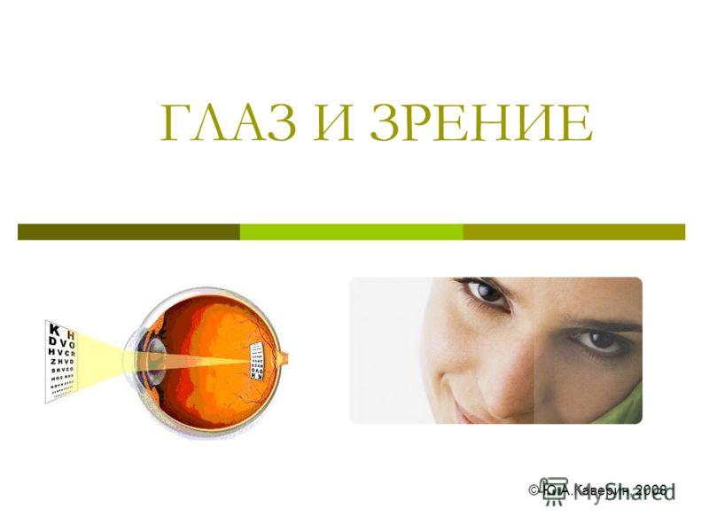 ГЛАЗ И ЗРЕНИЕ © Ю.А.Каверин, 2008
