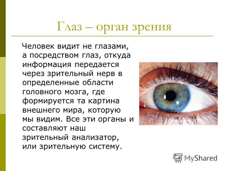 Методы жданова по восстановлению зрения