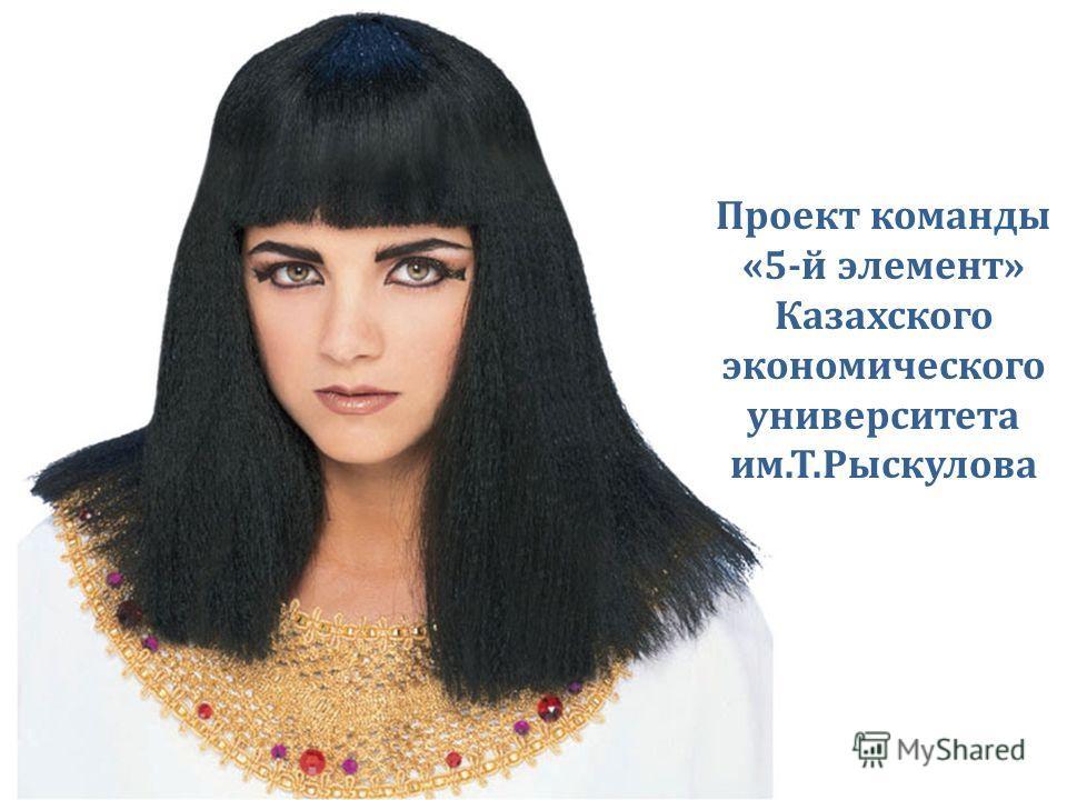 Проект команды «5-й элемент» Казахского экономического университета им.Т.Рыскулова
