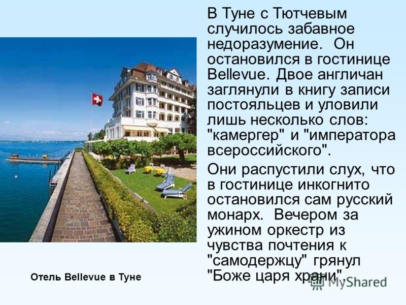 В Туне с Тютчевым случилось забавное недоразумение. Он остановился в гостинице Bellevue. Двое англичан заглянули в книгу записи постояльцев и уловили лишь несколько слов: