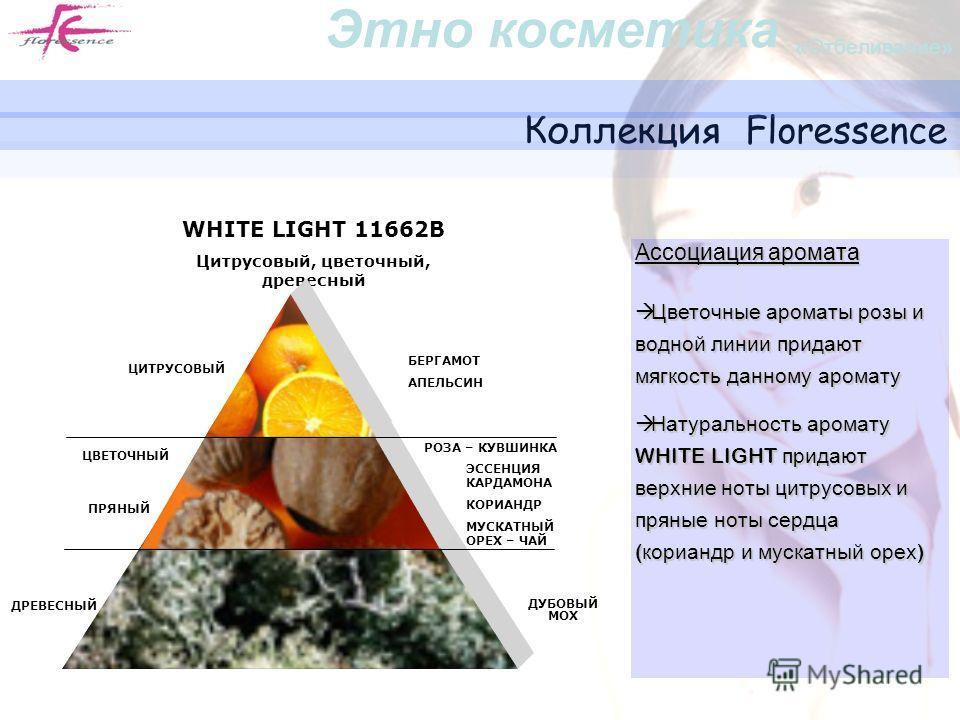 Коллекция Floressence WHITE LIGHT 11662B Цитрусовый, цветочный, древесный ЦИТРУСОВЫЙ БЕРГАМОТ АПЕЛЬСИН ДРЕВЕСНЫЙ ДУБОВЫЙ МОХ РОЗА – КУВШИНКА ПРЯНЫЙ ЭССЕНЦИЯ КАРДАМОНА КОРИАНДР МУСКАТНЫЙ ОРЕХ – ЧАЙ ЦВЕТОЧНЫЙ Ассоциация аромата Цветочные ароматы розы и