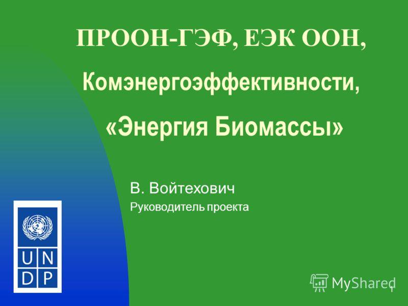 1 ПРООН-ГЭФ, ЕЭК ООН, Комэнергоэффективности, «Энергия Биомассы» В. Войтехович Руководитель проекта