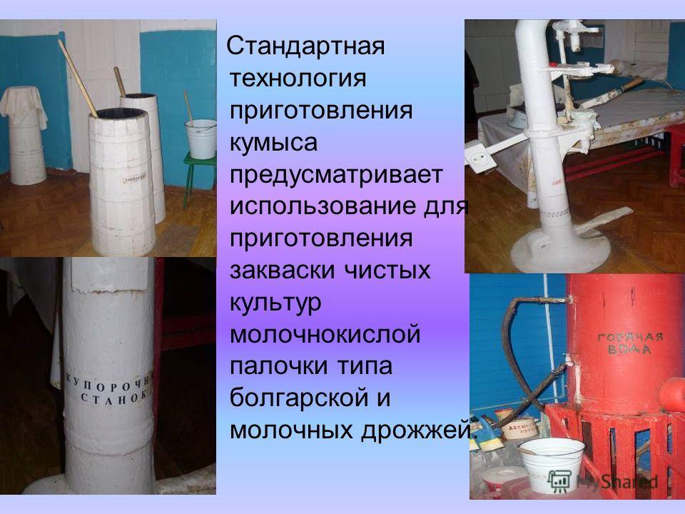 Стандартная технология приготовления кумыса предусматривает использование для приготовления закваски чистых культур молочнокислой палочки типа болгарской и молочных дрожжей.
