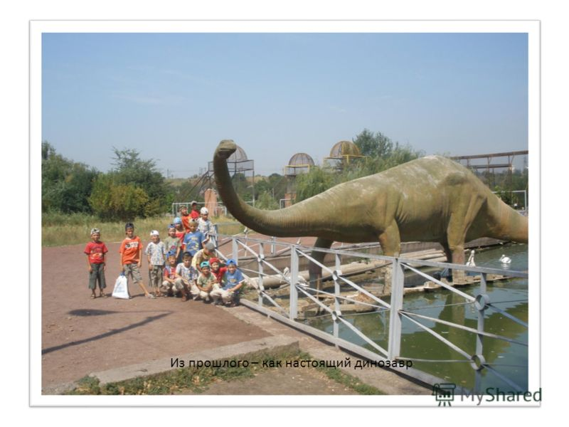 Из прошлого – как настоящий динозавр