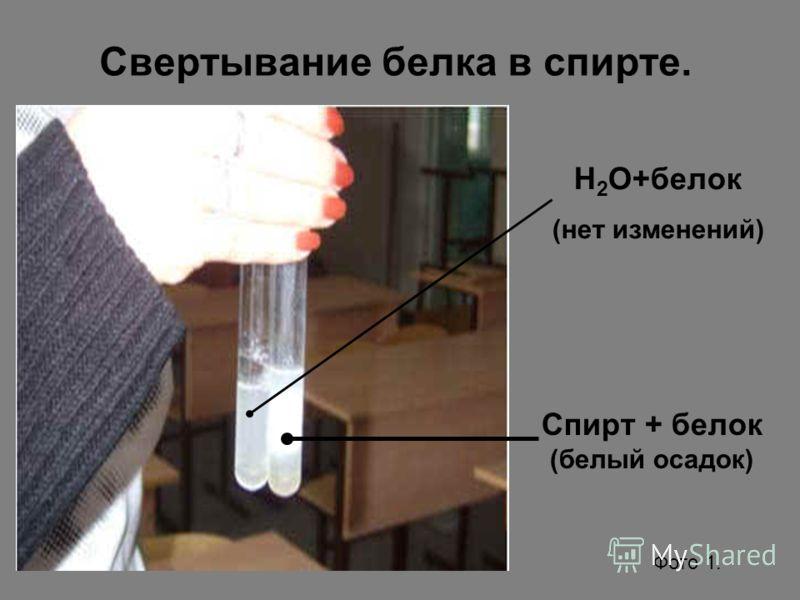 Свертывание белка в спирте. Спирт + белок (белый осадок) Н 2 О+белок (нет изменений) Фото 1.
