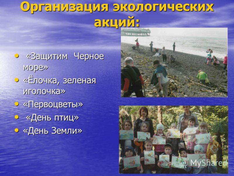 Организация экологических акций: «Защитим Черное море» «Защитим Черное море» «Ёлочка, зеленая иголочка» «Ёлочка, зеленая иголочка» «Первоцветы» «Перво