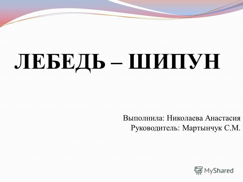 ЛЕБЕДЬ – ШИПУН Выполнила: Николаева Анастасия Руководитель: Мартынчук С.М.