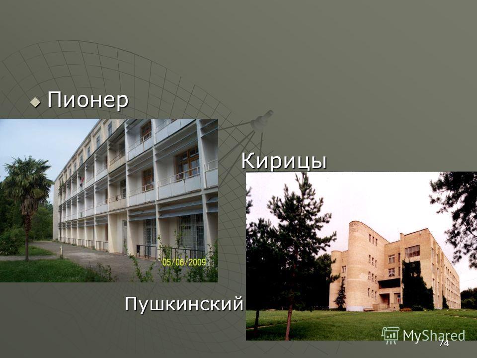Пионер Пионер Кирицы КирицыПушкинский 74
