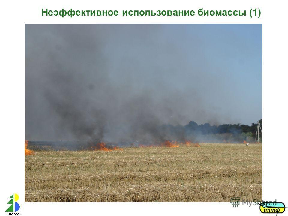 Неэффективное использование биомассы (1)