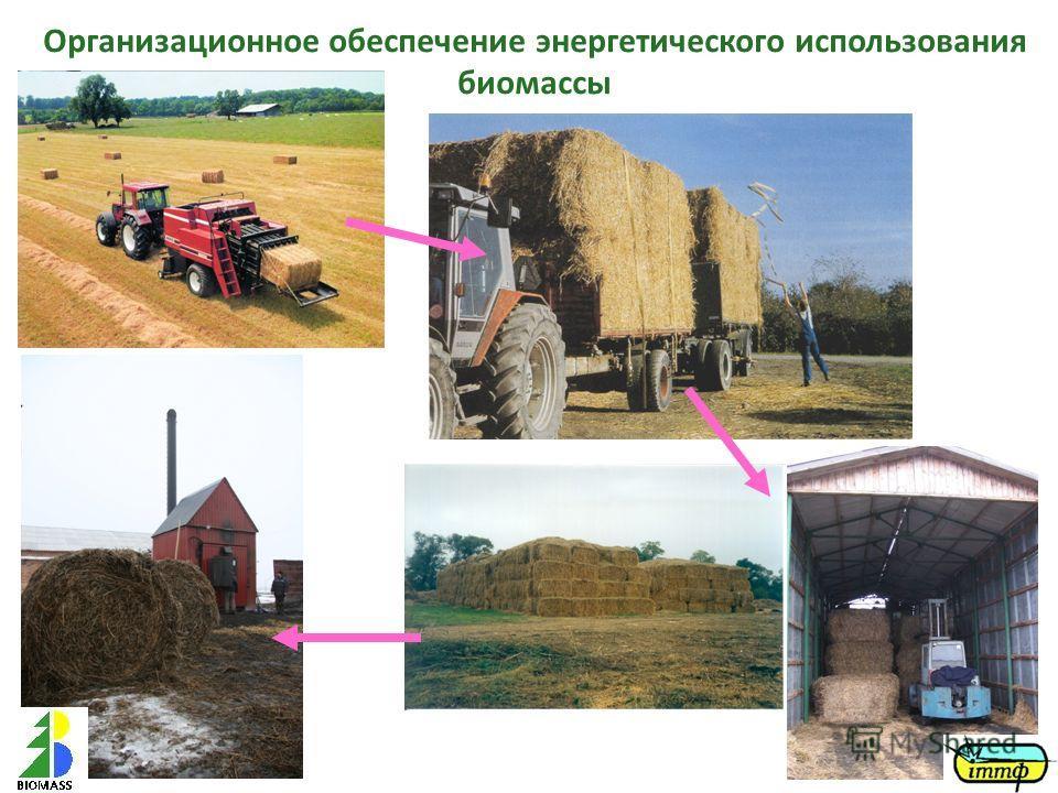 Организационное обеспечение энергетического использования биомассы