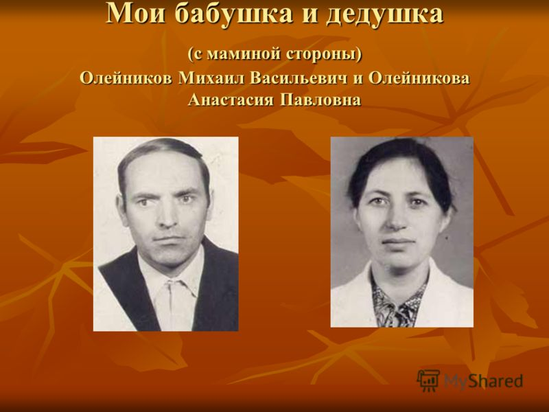Мои бабушка и дедушка (с маминой стороны) Олейников Михаил Васильевич и Олейникова Анастасия Павловна