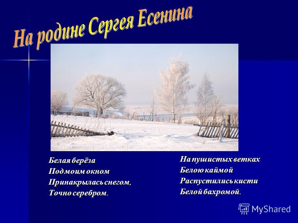 Белая берёза Под моим окном Принакрылась снегом, Точно серебром. На пушистых ветках Белою каймой Распустились кисти Белой бахромой.