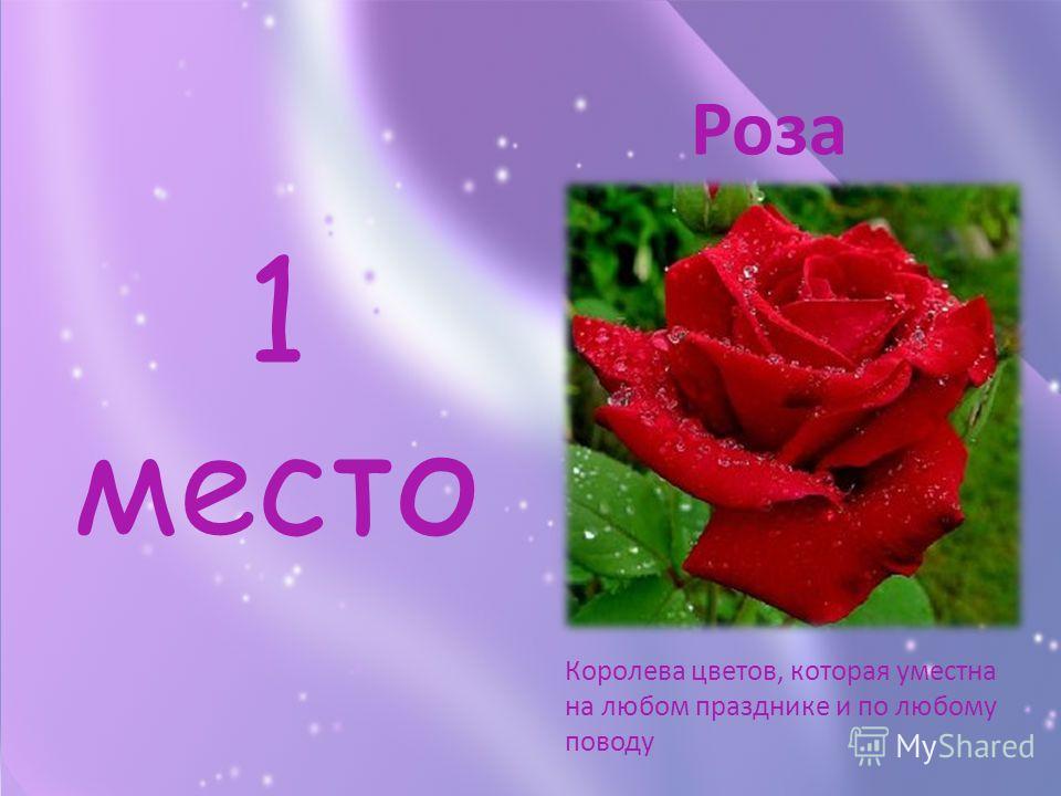 1 место Королева цветов, которая уместна на любом празднике и по любому поводу Роза