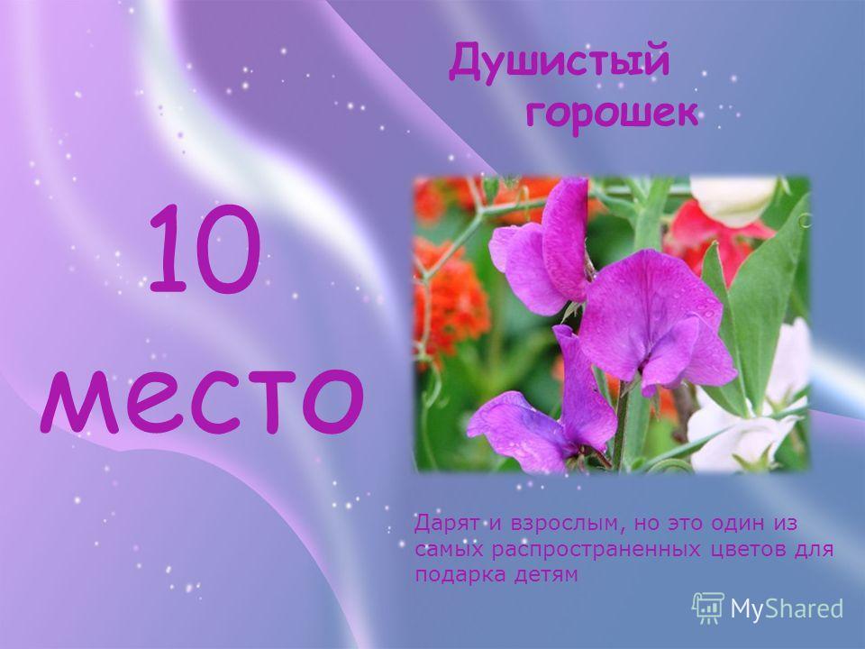 10 место Дарят и взрослым, но это один из самых распространенных цветов для подарка детям Душистый горошек