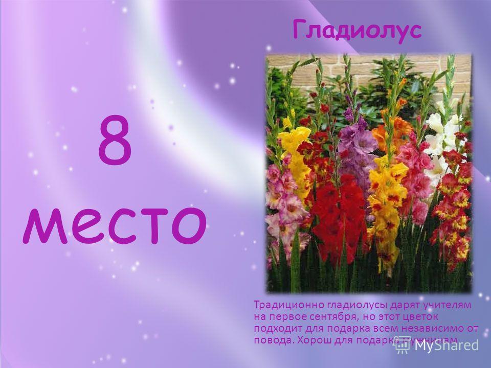 8 место Традиционно гладиолусы дарят учителям на первое сентября, но этот цветок подходит для подарка всем независимо от повода. Хорош для подарка мужчинам Гладиолус