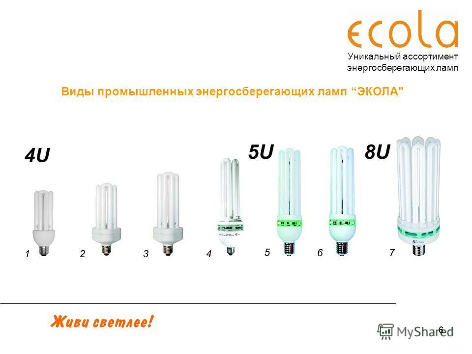 6 Уникальный ассортимент энергосберегающих ламп Виды промышленных энергосберегающих ламп ЭКОЛА