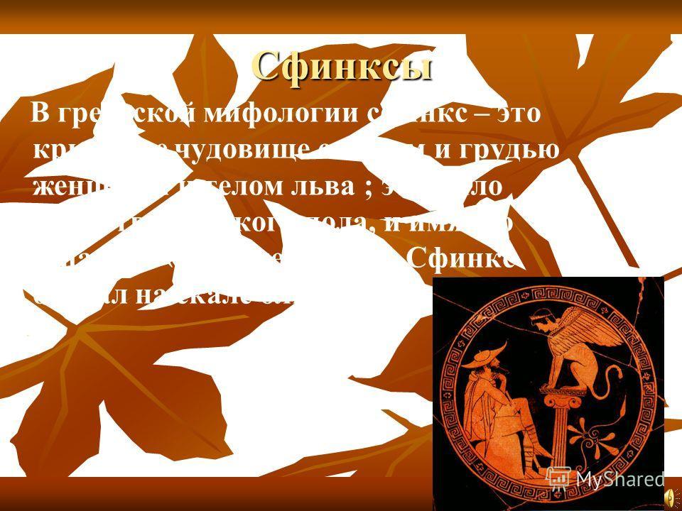 Сфинксы В греческой мифологии сфинкс – это крылатое чудовище с лицом и грудью женщины и телом льва ; это было существо женского пола, и имя его означало «душительница» Сфинкс обитал на скале близ Фиви..