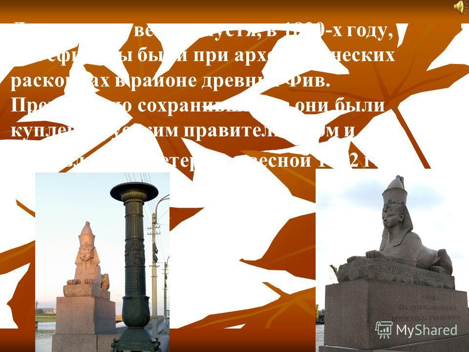 Лишь много веков спустя, в 1820-х году, эти сфинксы были при археологических раскопках в районе древних Фив. Превосходно сохранившиеся, они были куплены русским правительством и доставлены в Петербург весной 1832 года.