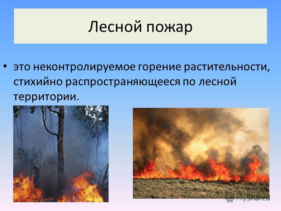 это неконтролируемое горение растительности, стихийно распространяющееся по лесной территории. Лесной пожар