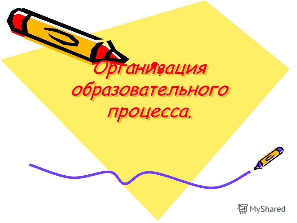 Организация образовательного процесса.