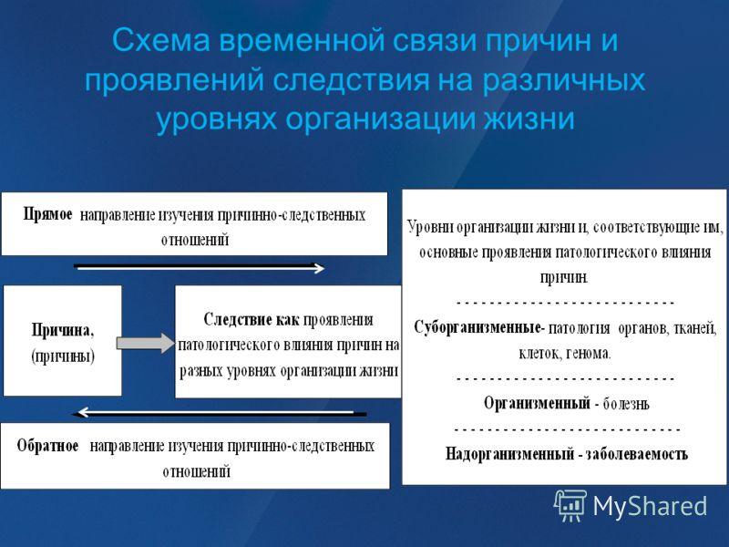 Схема временной связи причин и проявлений следствия на различных уровнях организации жизни