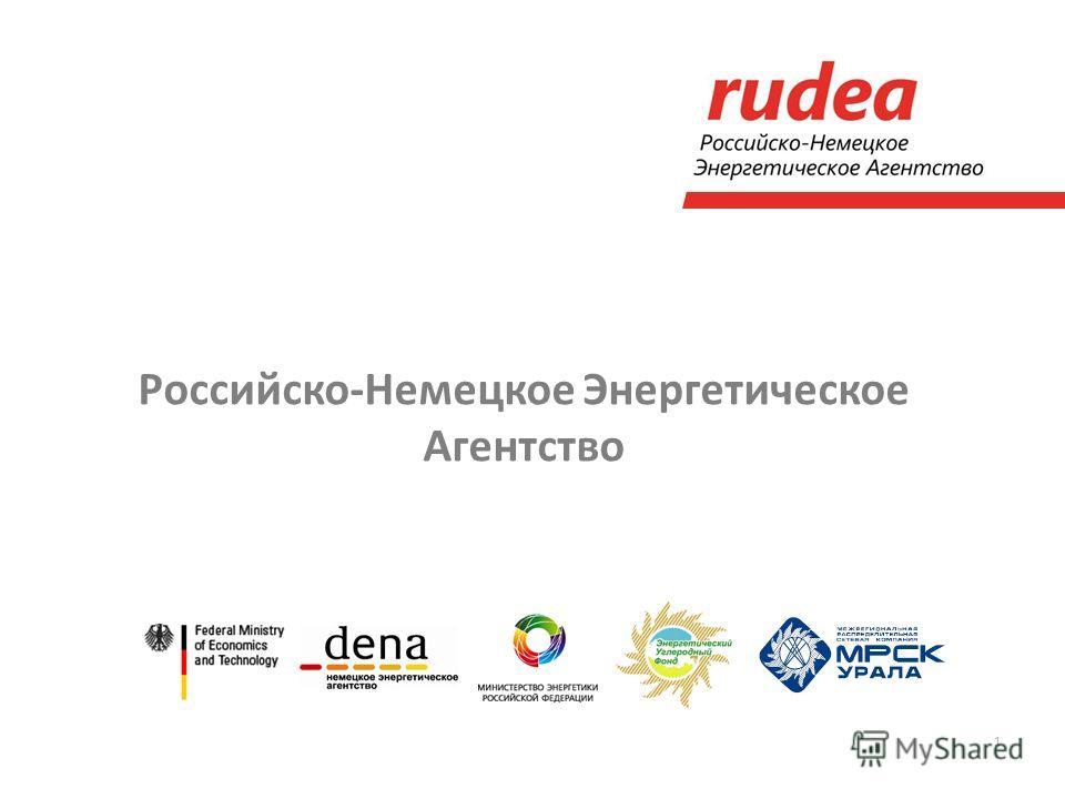 1 Российско-Немецкое Энергетическое Агентство