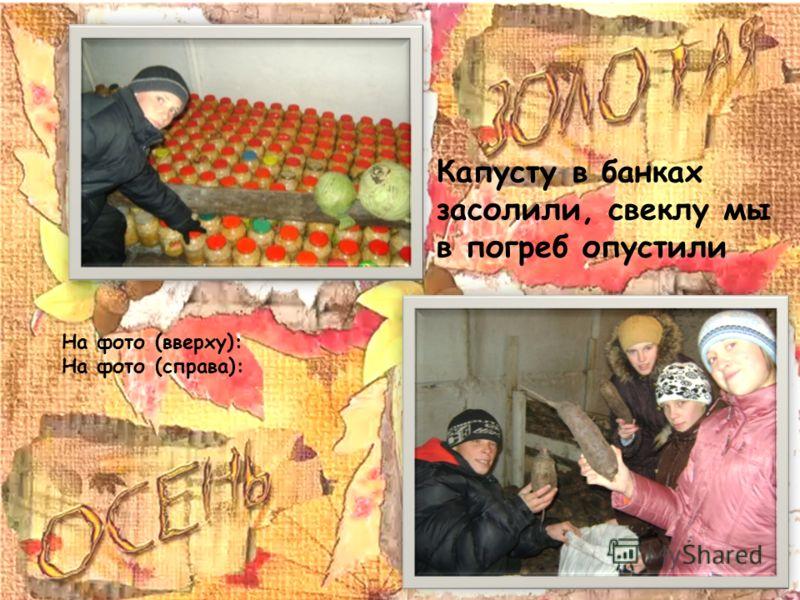 Капусту в банках засолили, свеклу мы в погреб опустили На фото (вверху): На фото (справа):