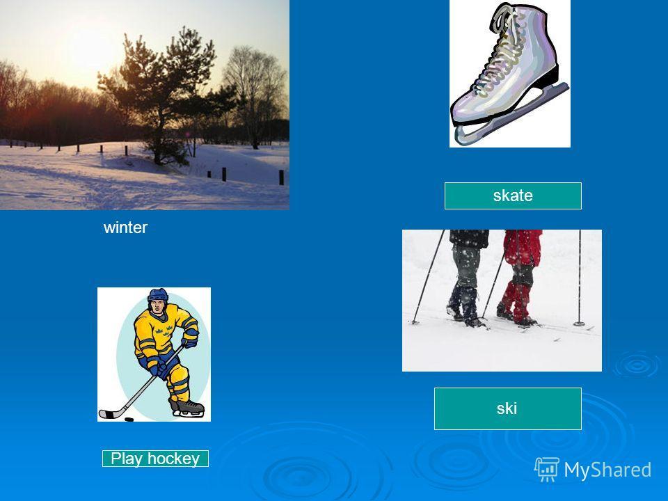 winter skate ski Play hockey