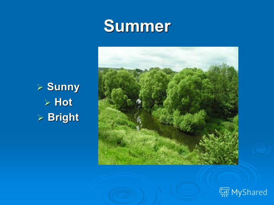 Summer Sunny Sunny Hot Hot Bright Bright
