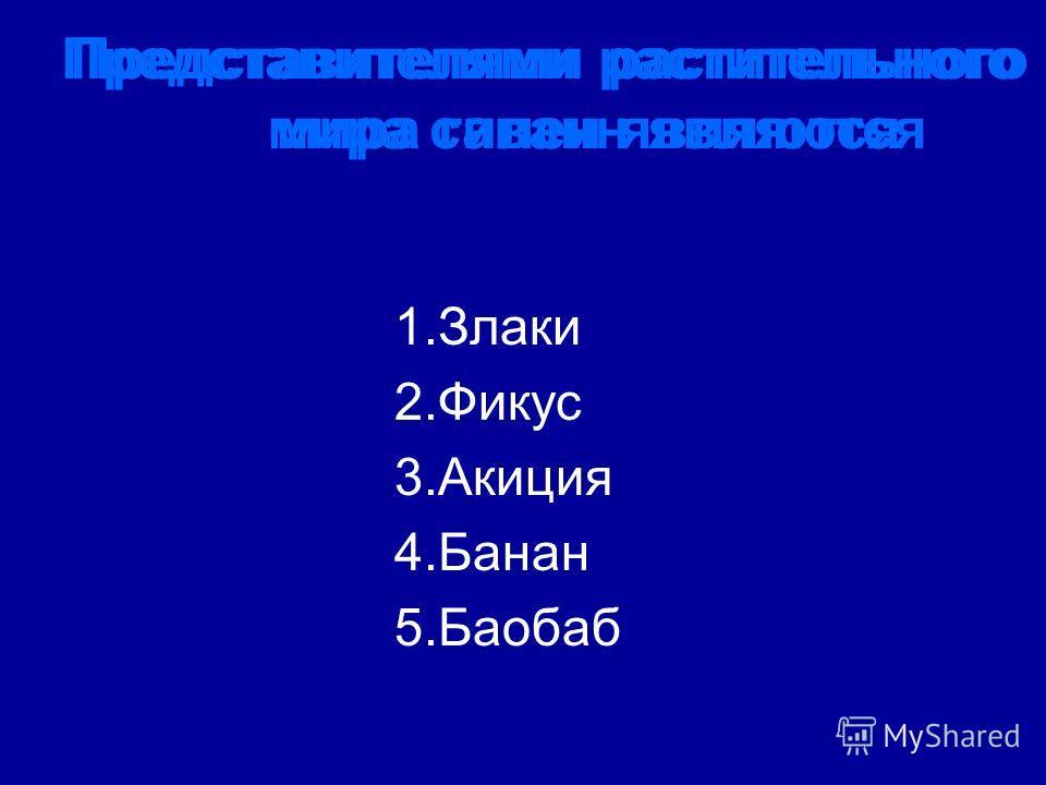 Представителями растительного мира гилеи являются Представителями растительного мира саванн являются 1.Злаки 2.Фикус 3.Акиция 4.Банан 5.Баобаб