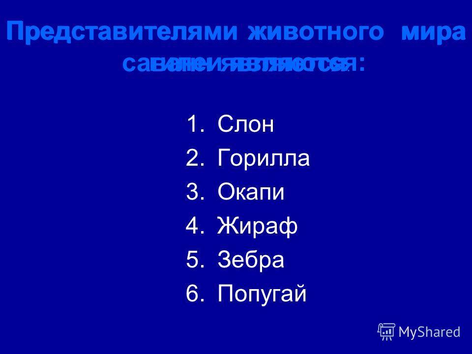 Представителями животного мира гилеи являются: Представителями животного мира саванн являются : 1.Слон 2.Горилла 3.Окапи 4.Жираф 5.Зебра 6.Попугай