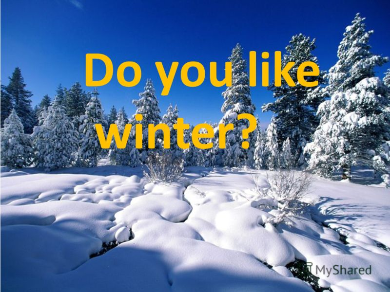 Do you like winter?