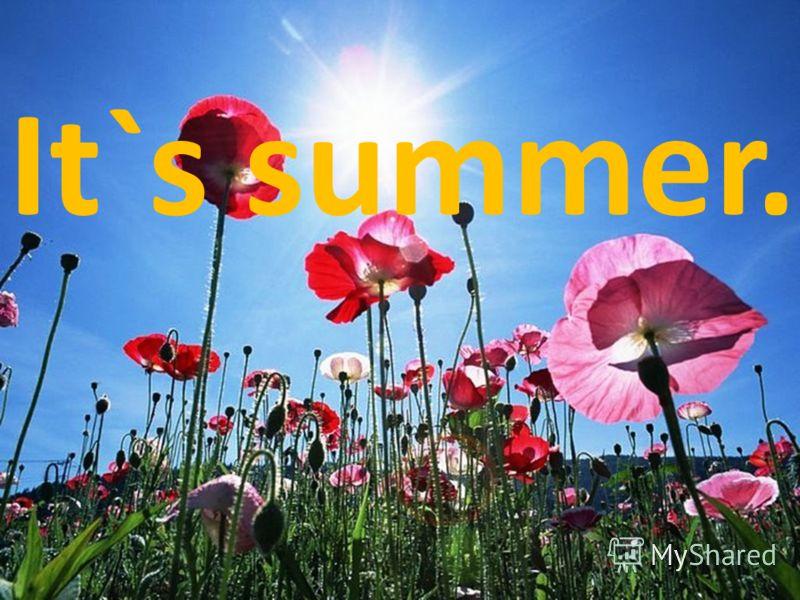 It`s summer.