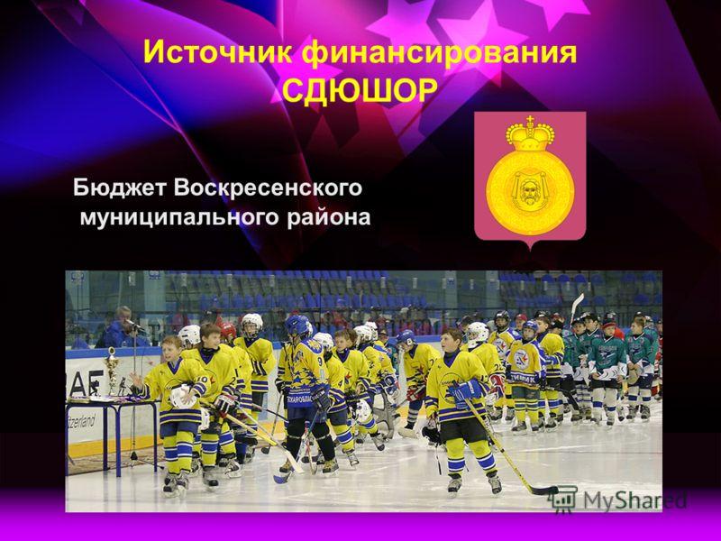 Источник финансирования СДЮШОР Бюджет Воскресенского муниципального района
