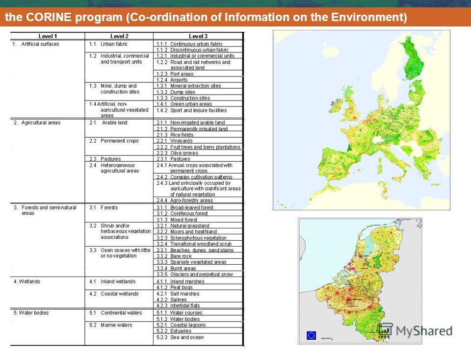 the CORINE program (Co-ordination of Information on the Environment)