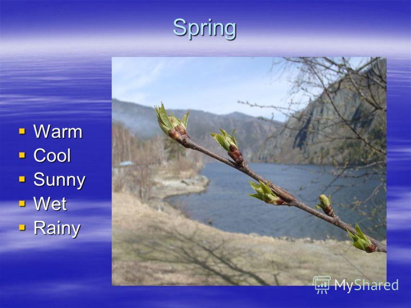 Spring Warm Warm Cool Cool Sunny Sunny Wet Wet Rainy Rainy