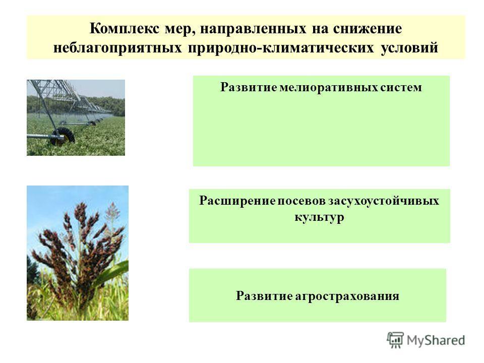 Комплекс мер, направленных на снижение неблагоприятных природно-климатических условий Развитие агрострахования Расширение посевов засухоустойчивых культур Развитие мелиоративных систем