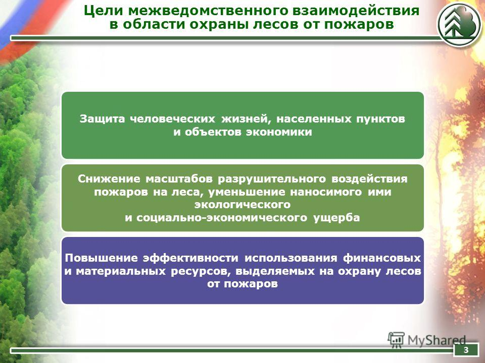Цели межведомственного взаимодействия в области охраны лесов от пожаров 3 Защита человеческих жизней, населенных пунктов и объектов экономики Снижение масштабов разрушительного воздействия пожаров на леса, уменьшение наносимого ими экологического и с
