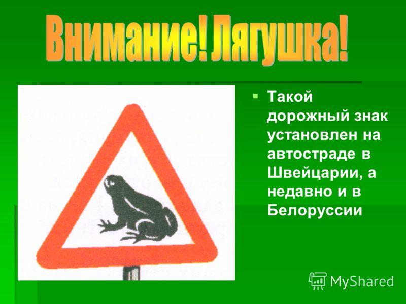 Такой дорожный знак установлен на автостраде в Швейцарии, а недавно и в Белоруссии