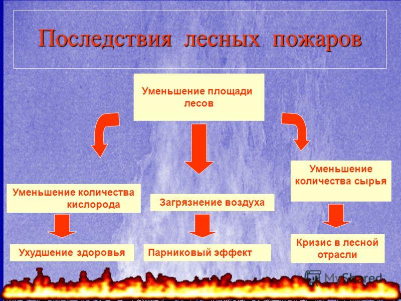 Последствия лесных пожаров Уменьшение площади лесов Уменьшение количества сырья Кризис в лесной отрасли Уменьшение количества кислорода Ухудшение здоровья Загрязнение воздуха Парниковый эффект