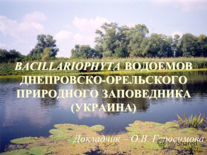 BACILLARIOPHYTA ВОДОЕМОВ ДНЕПРОВСКО-ОРЕЛЬСКОГО ПРИРОДНОГО ЗАПОВЕДНИКА (УКРАИНА) Докладчик – О.В. Герасимова