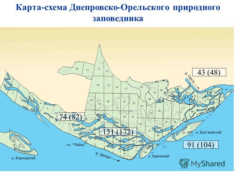 74 (82) 151 (172) 91 (104) 43 (48) Карта-схема Днепровско-Орельского природного заповедника