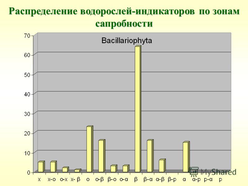 Распределение водорослей-индикаторов по зонам сапробности